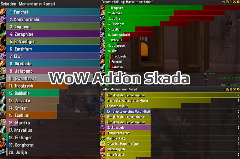 WoW Addon Skada